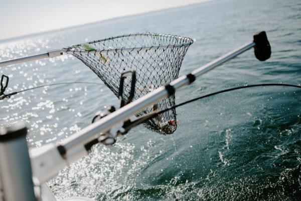 Lake MI catch with a Rod Boss™